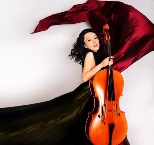 李维的大提琴世界
