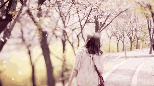 春分时节最美的小提琴曲 春光美 鸿雁 和最美的祝福送给好友