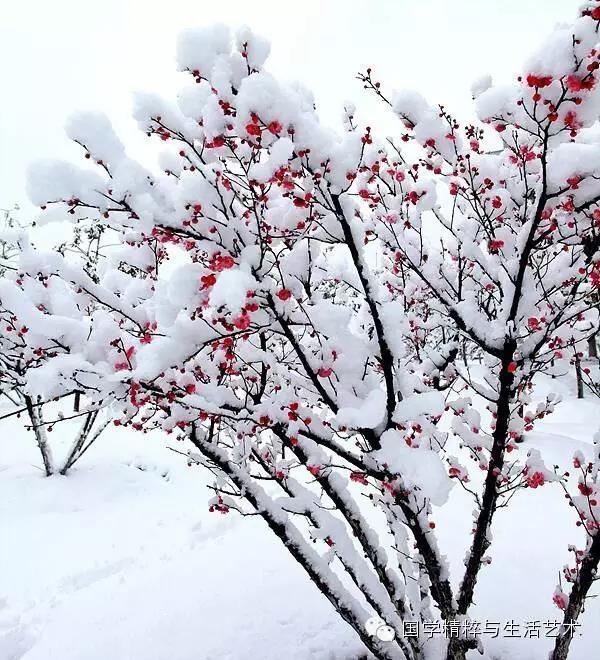 冬至内蒙古风景